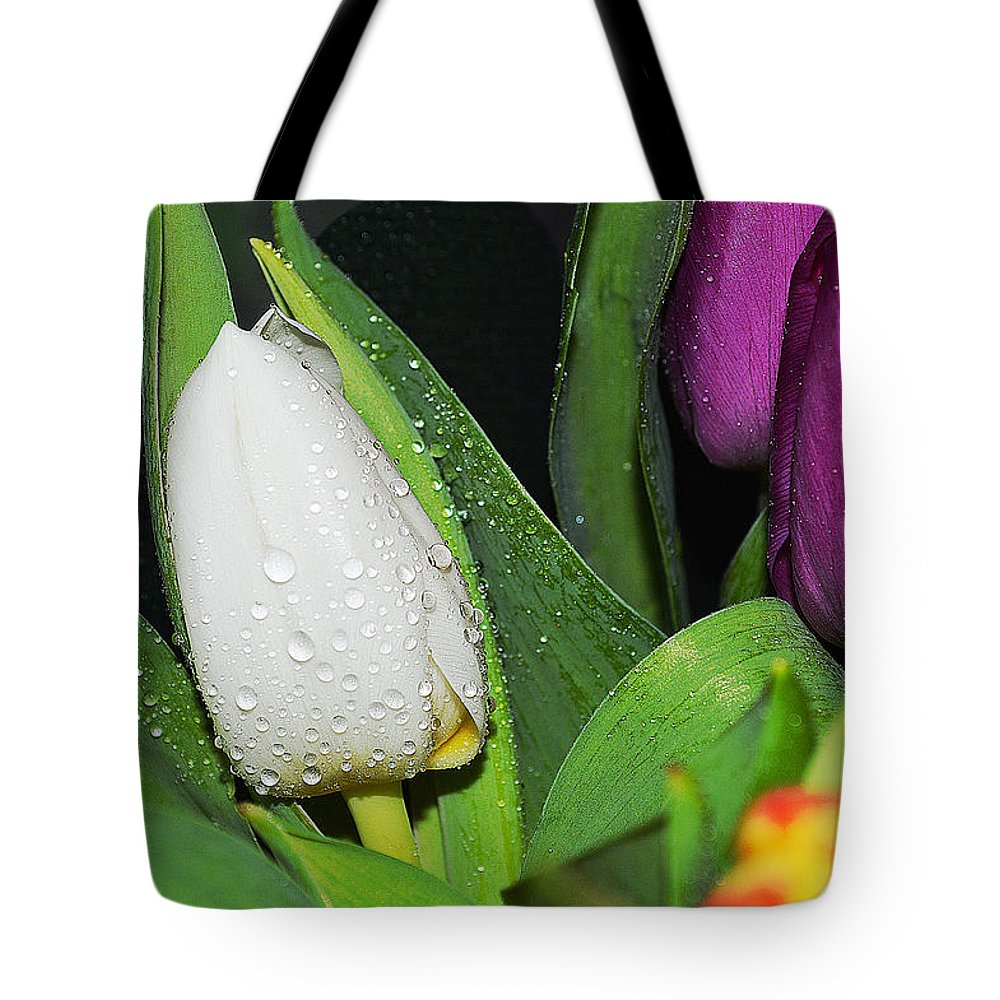 Tulip Tote Bag featuring the photograph Early Morning by Felicia Tica