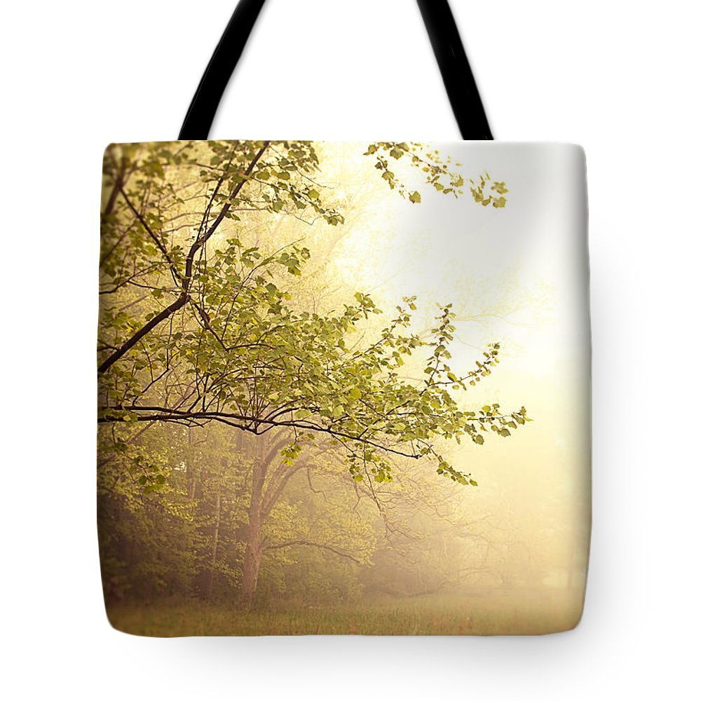 Nature Tote Bag featuring the photograph Early Morning Fog by Erin Johnson