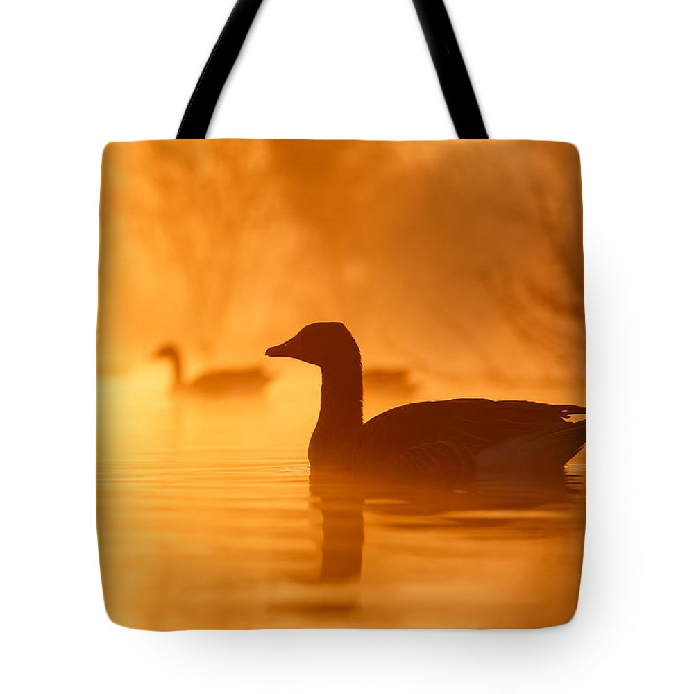 Goose Photographs Tote Bags