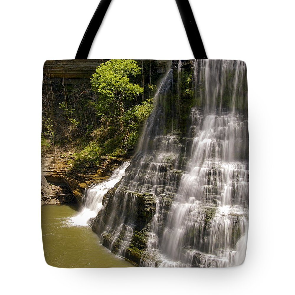 Burgess Falls State Park Tote Bag featuring the photograph Early Spring by Bob Phillips