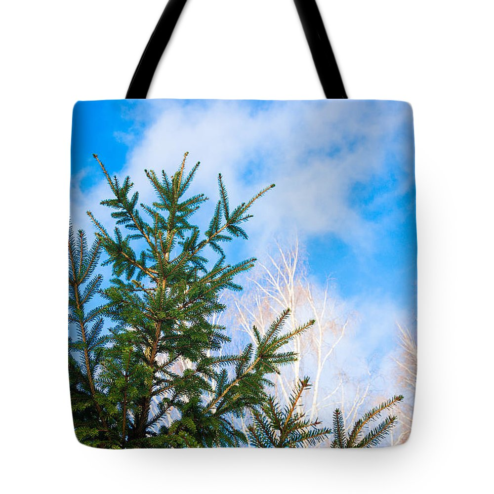 Backgrounds Tote Bag featuring the photograph Early Spring - Featured 2 by Alexander Senin