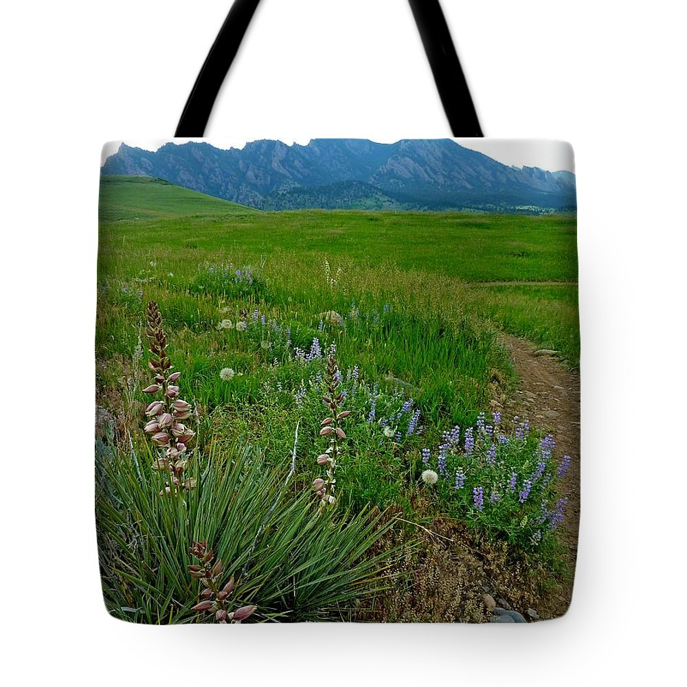 Nature Photography Tote Bag featuring the photograph Early Summer Walk by George Tuffy