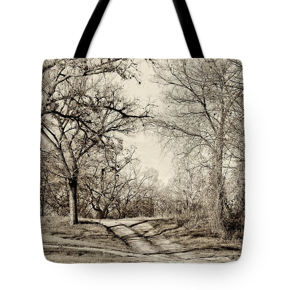 Vertical Tote Bag featuring the photograph Early Winter by Gary Richards