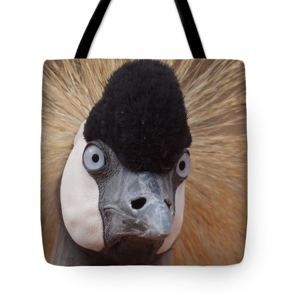African Crowned Cranes Tote Bag featuring the photograph East African Crowned Crane 6 by Ernie Echols