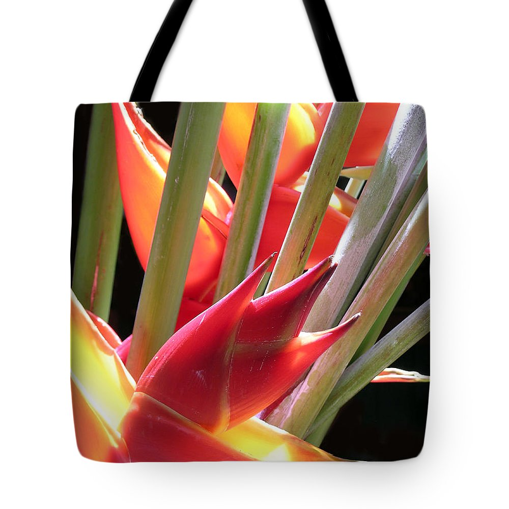 Heliconia Tote Bag featuring the photograph Easter Heliconia by James Temple