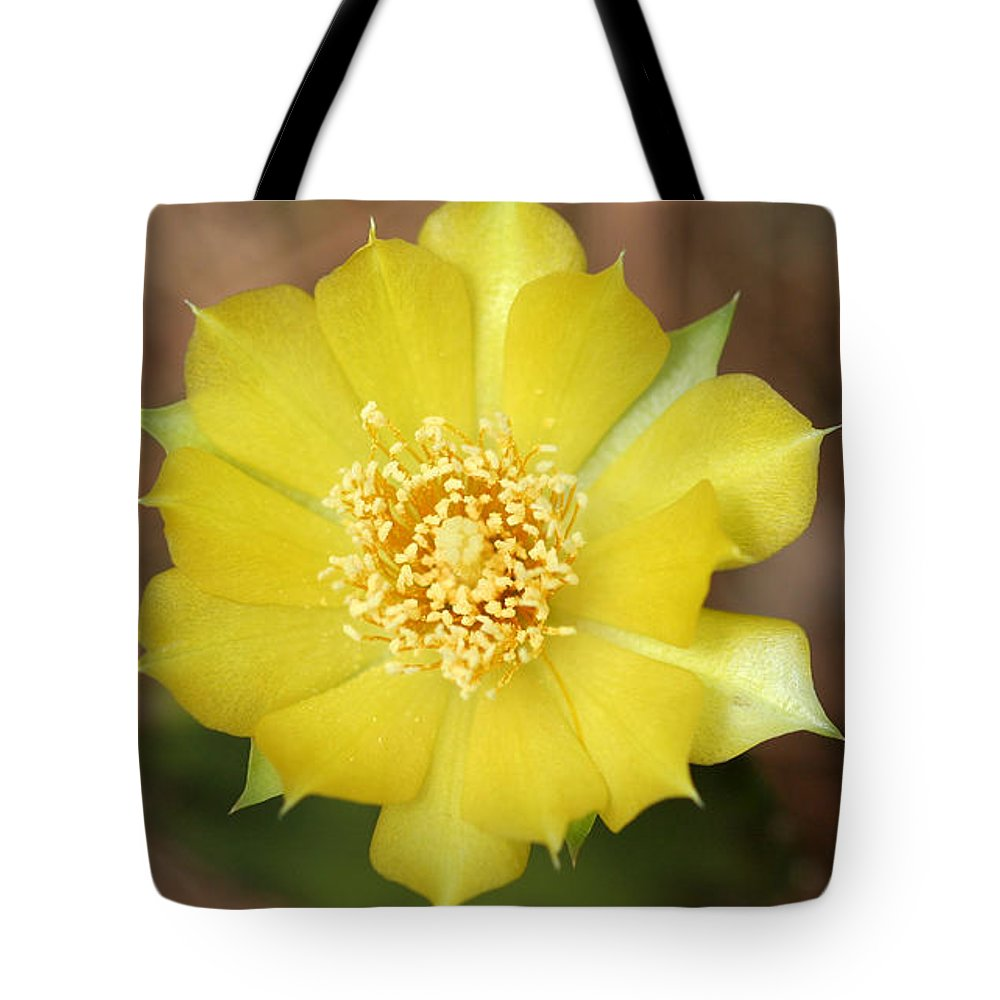 Nature Tote Bag featuring the photograph Eastern Prickly Pear Cactus by April Wietrecki Green