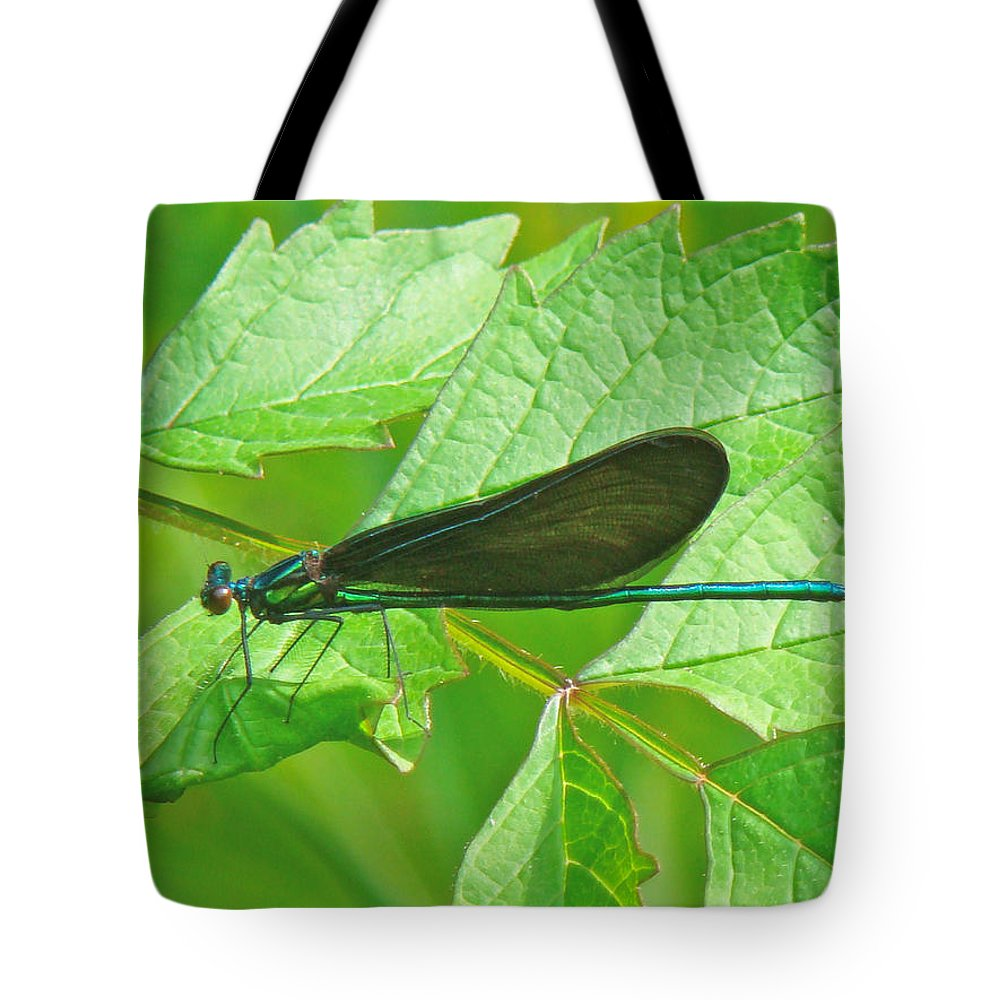 Ebony Jewelwing Tote Bag featuring the photograph Ebony Jewelwing Damselfly - Calopteryx Maculata by Mother Nature