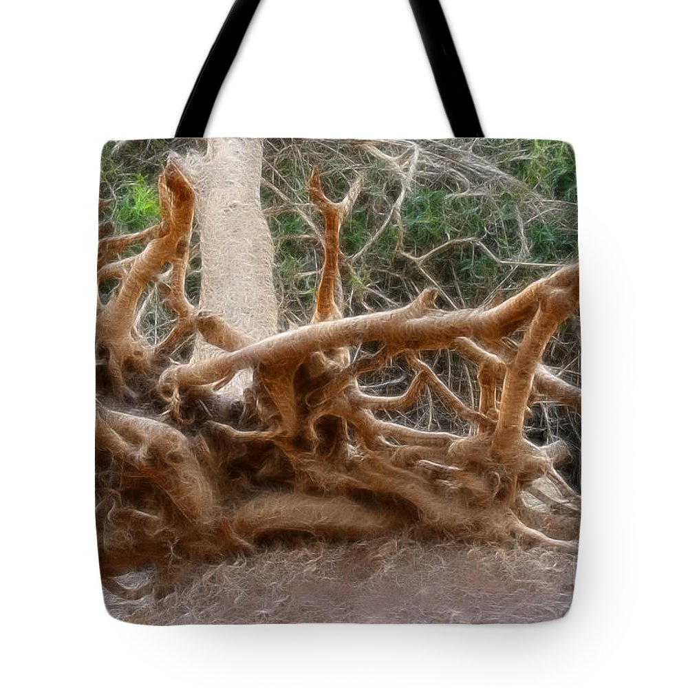 Tree Root Tote Bag featuring the photograph Eccentric Tree Root Growing In Ein Gedi by Doc Braham