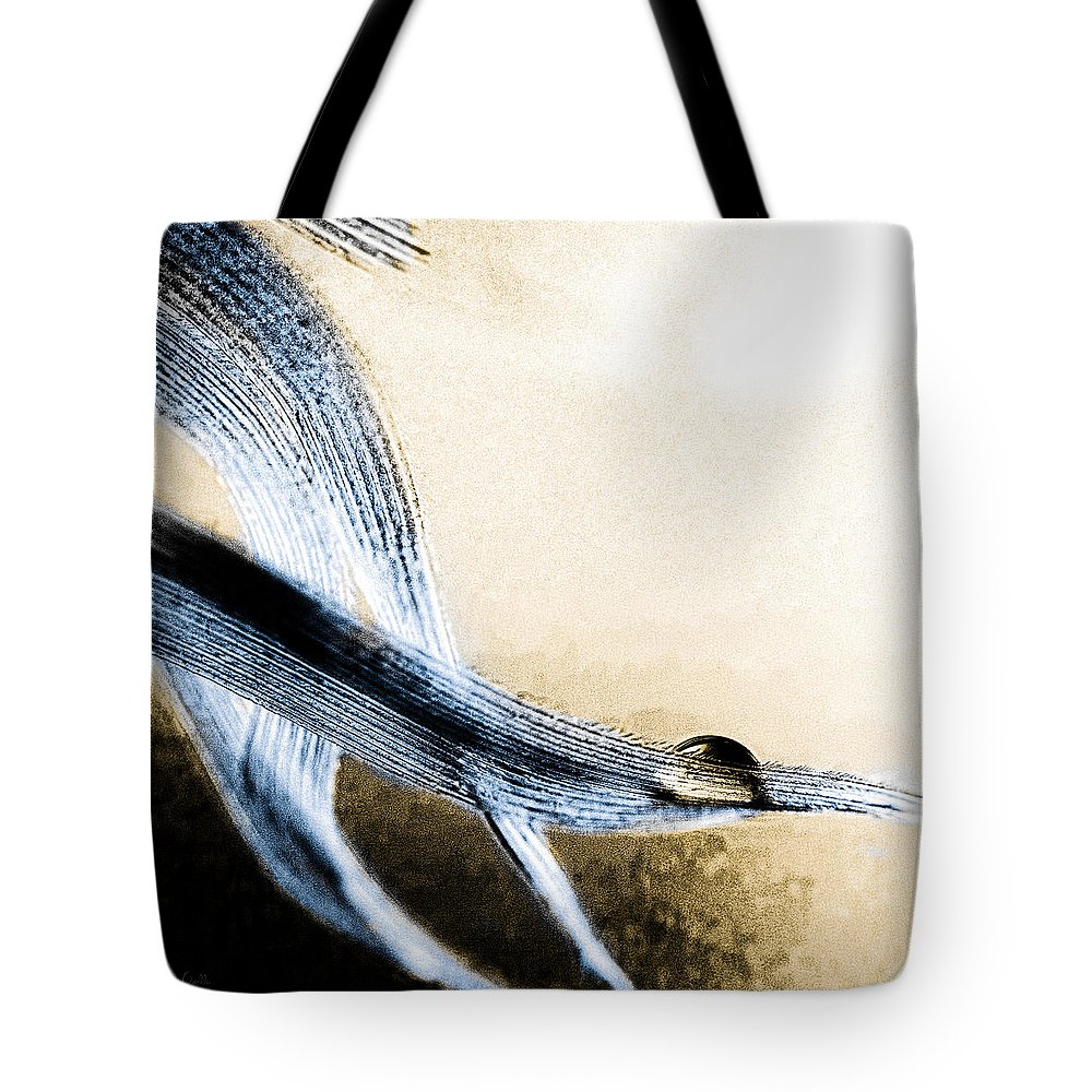 Feather Tote Bag featuring the photograph Edge Of A Feather by Bob Orsillo