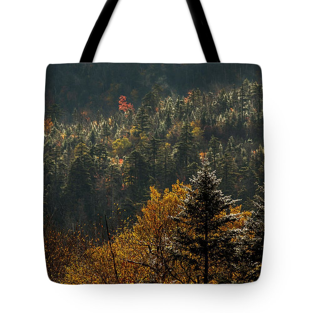 Autumn Tote Bag featuring the photograph Edge Of Light by Jonathan Steele