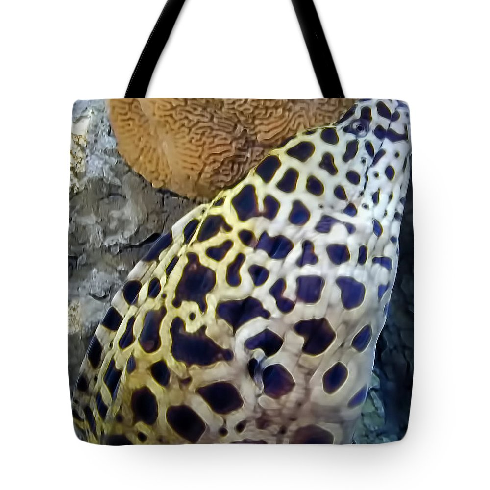 Eel Tote Bag featuring the photograph Eel 1 by Dawn Eshelman