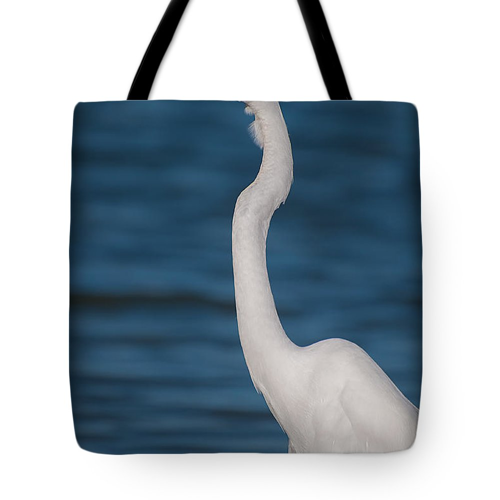 Great Tote Bag featuring the photograph Egret 148 by Photos By Cassandra