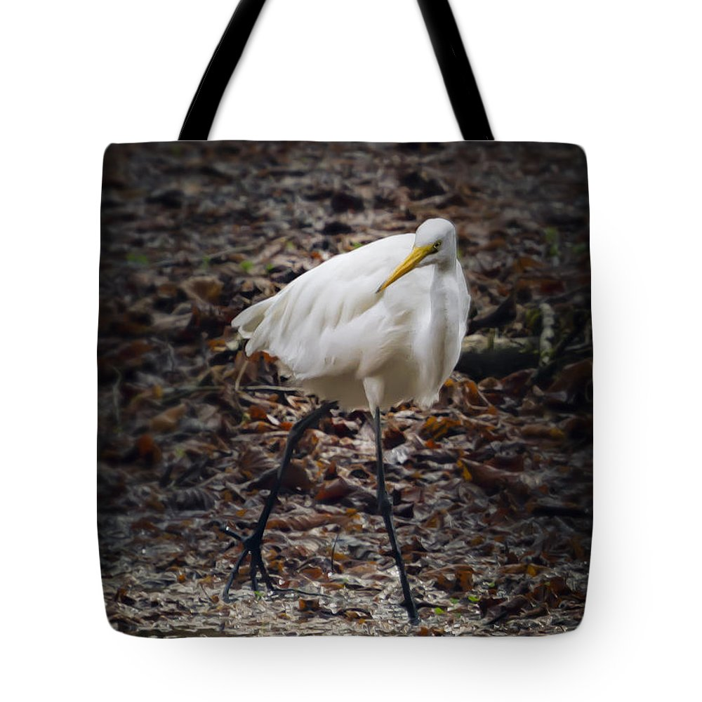 Egret Tote Bag featuring the photograph Egret Strut by Belinda Greb