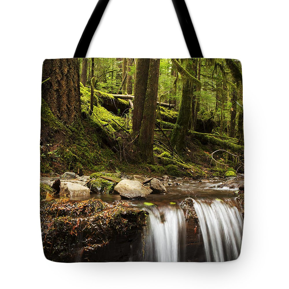 Forest Tote Bag featuring the photograph Elemental by Belinda Greb