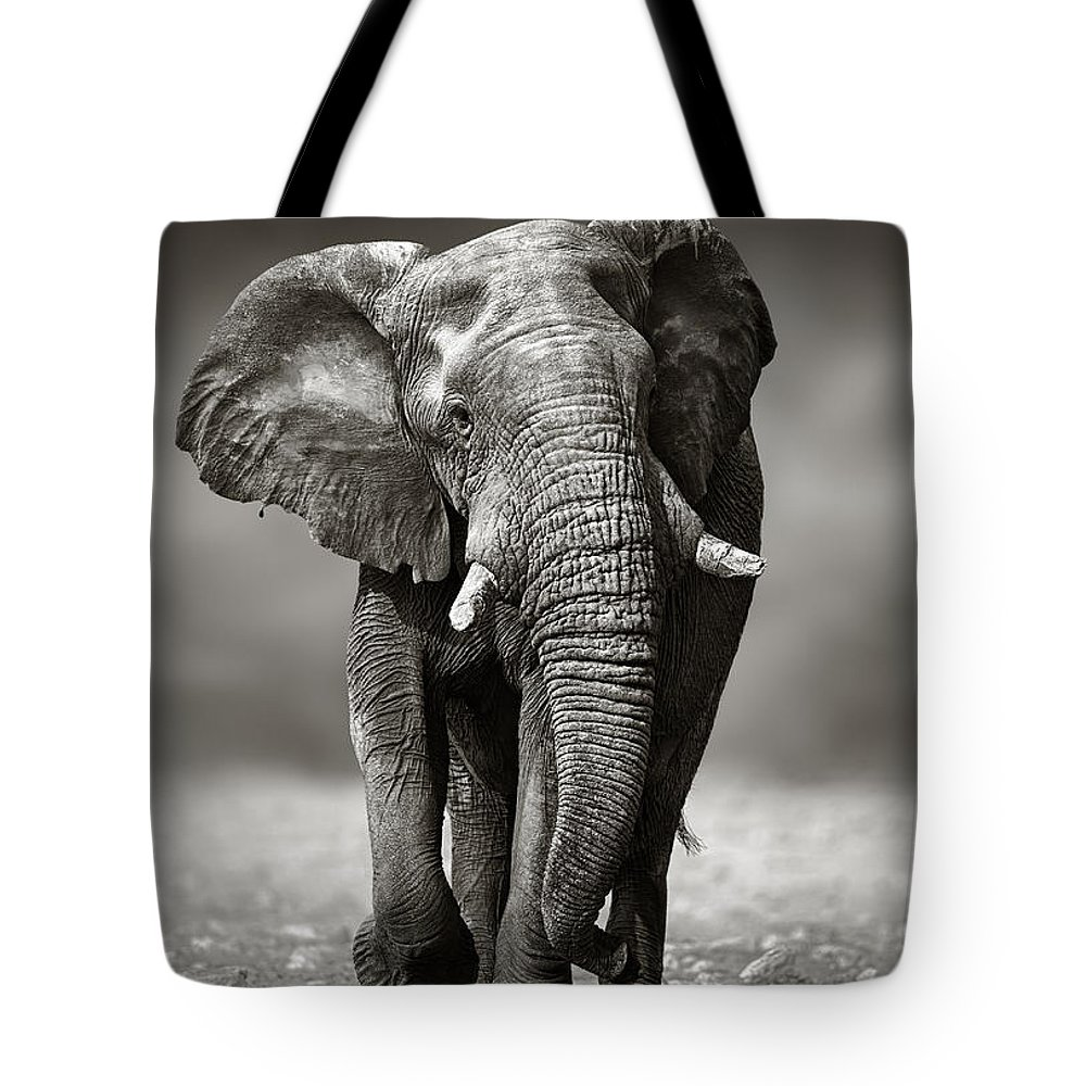 Elephant Tote Bag featuring the photograph Elephant Approach From The Front by Johan Swanepoel