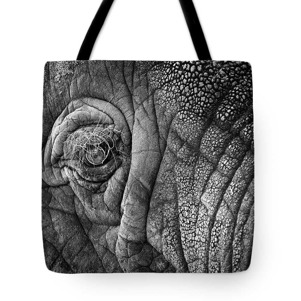 Africa Tote Bag featuring the photograph Elephant Eye by Sebastian Musial