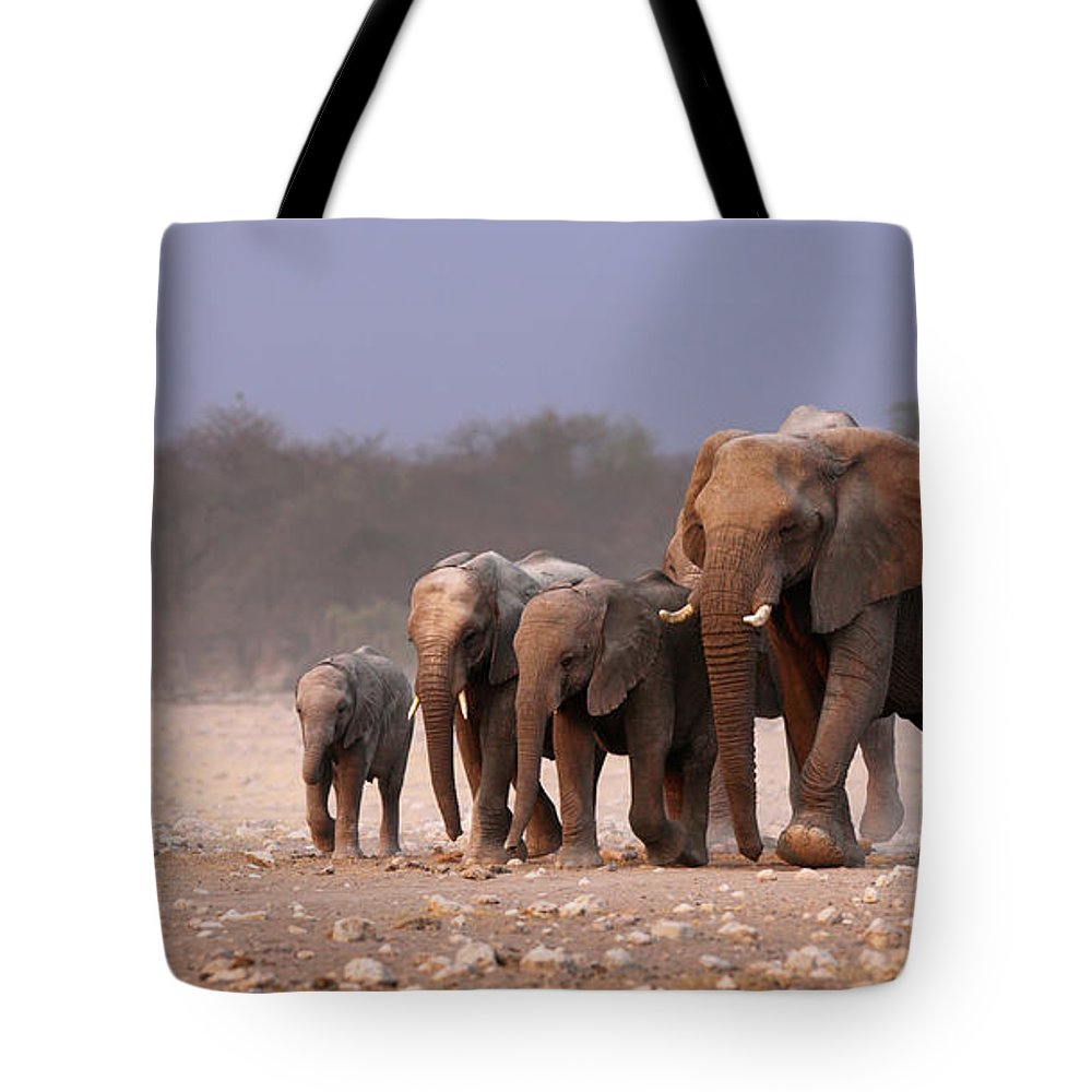 Wild Tote Bag featuring the photograph Elephant herd by Johan Swanepoel