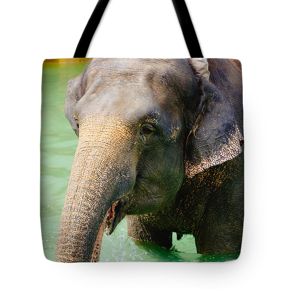 Water Tote Bag featuring the photograph Elephant In Water by Pati Photography