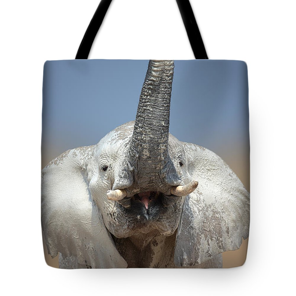 Wild Tote Bag featuring the photograph Elephant Portrait by Johan Swanepoel