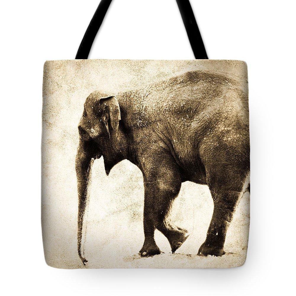 Elephant Tote Bag featuring the photograph Elephant Walk by Athena Mckinzie