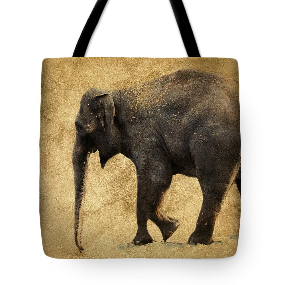 Elephant Tote Bag featuring the photograph Elephant Walk II by Athena Mckinzie