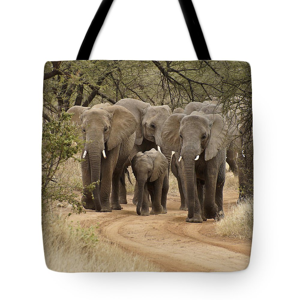 Africa Tote Bag featuring the photograph Elephants Have the Right of Way by Michele Burgess