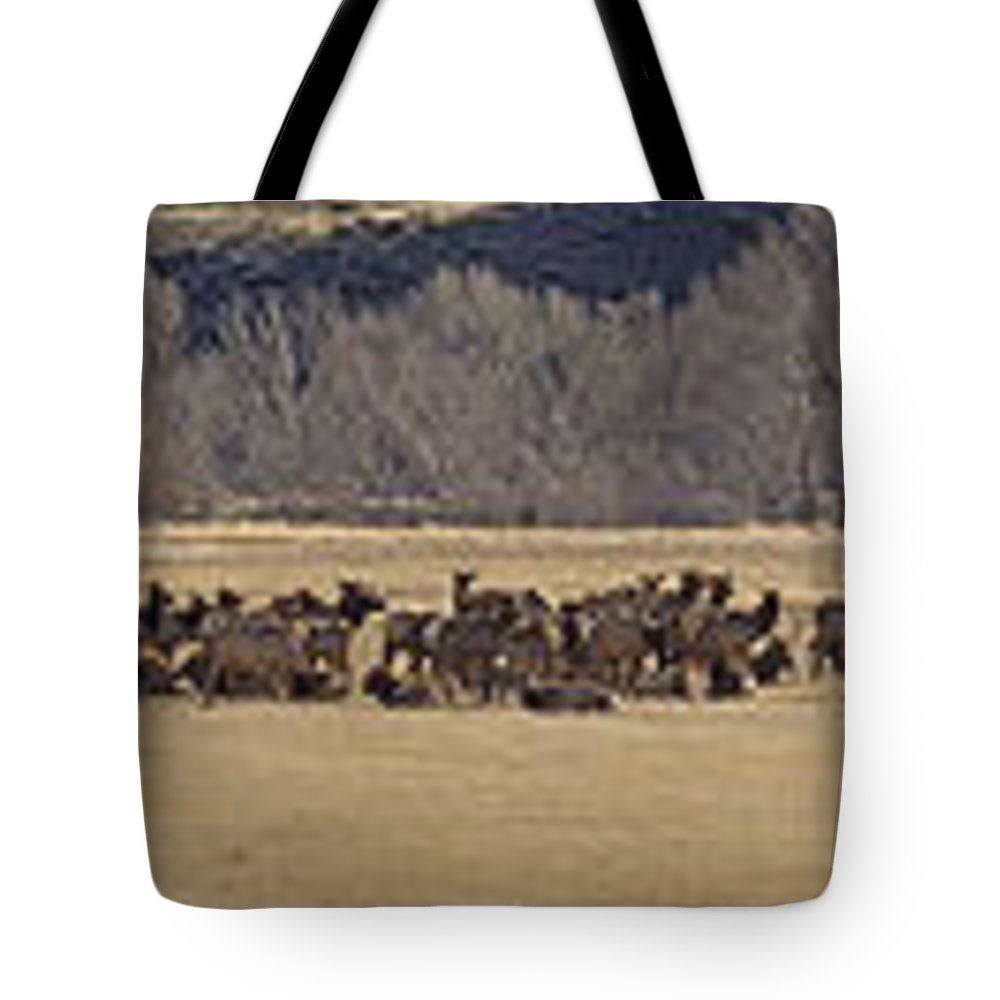 Elk Tote Bag featuring the photograph Elk Herd And Horses Panorama 18x161 by J L Woody Wooden