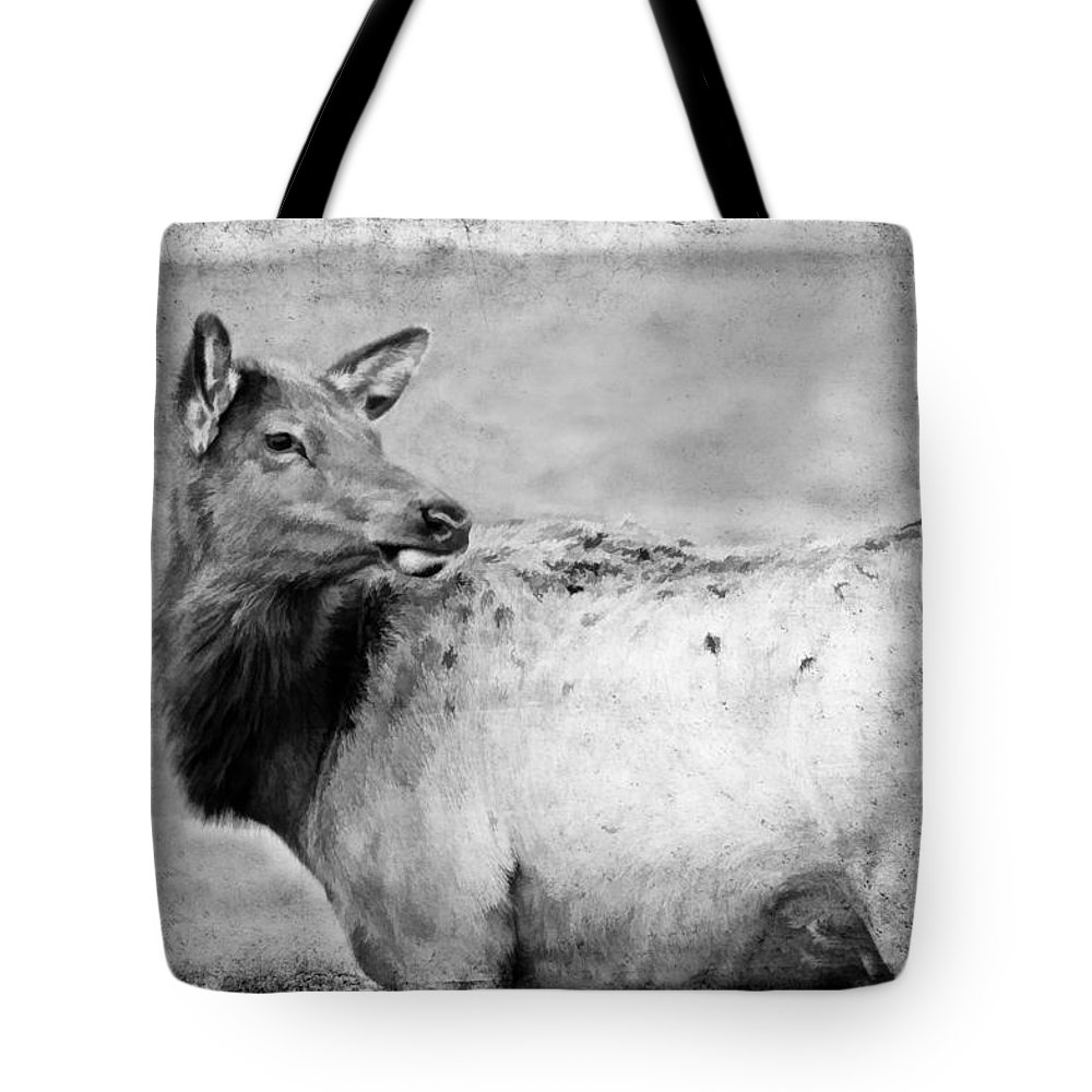 Elk Tote Bag featuring the photograph Elk IIi by Athena Mckinzie