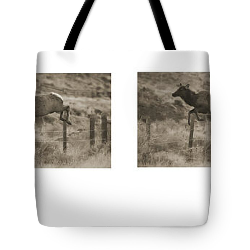 Elk Tote Bag featuring the photograph Elk Jumping A Fence by J L Woody Wooden