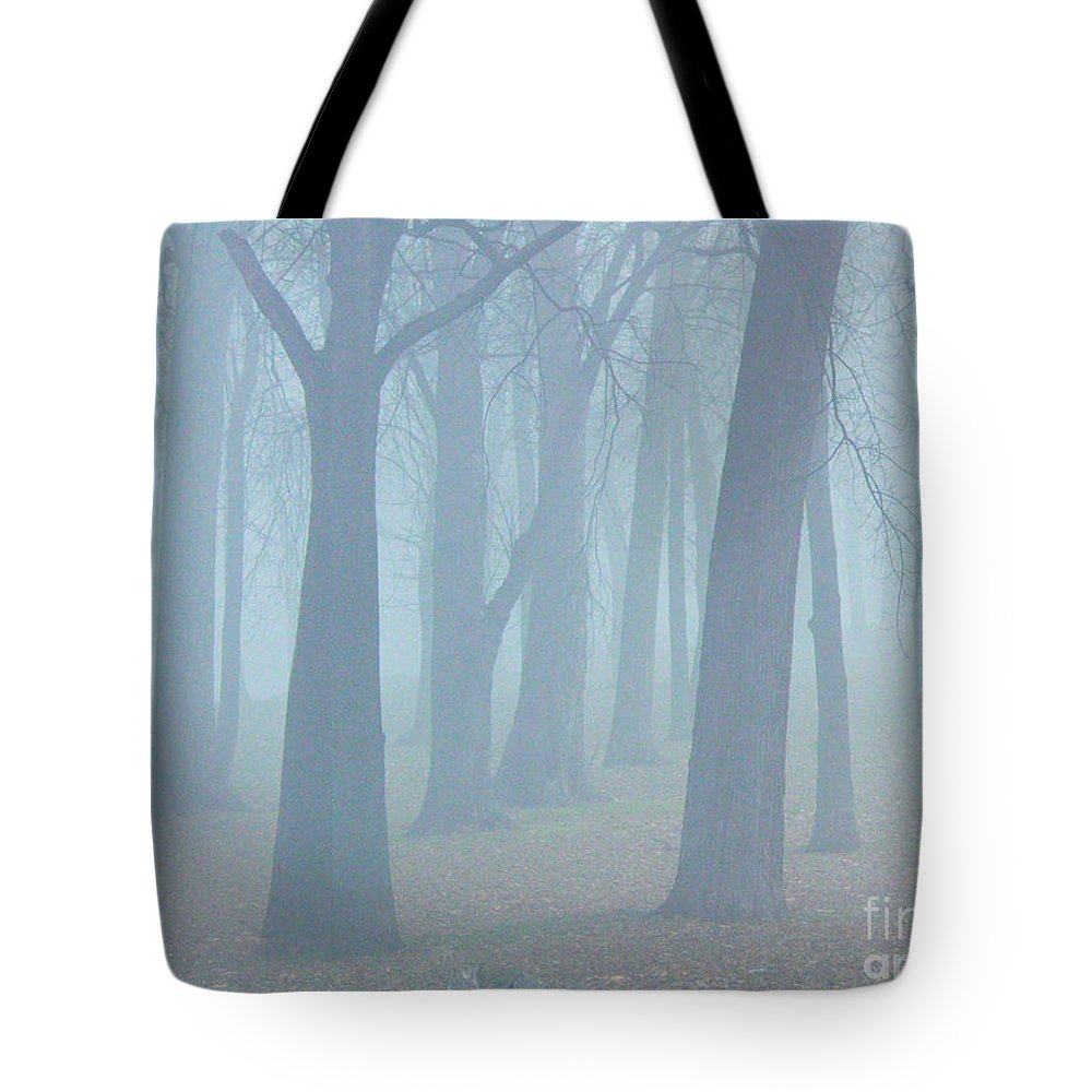 Elkhart Tote Bag featuring the photograph Elkhart Fog by Gary Richards