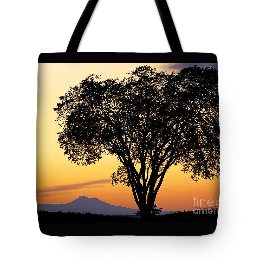 Twilight Tote Bag featuring the photograph Elm At Twilight by Alan L Graham