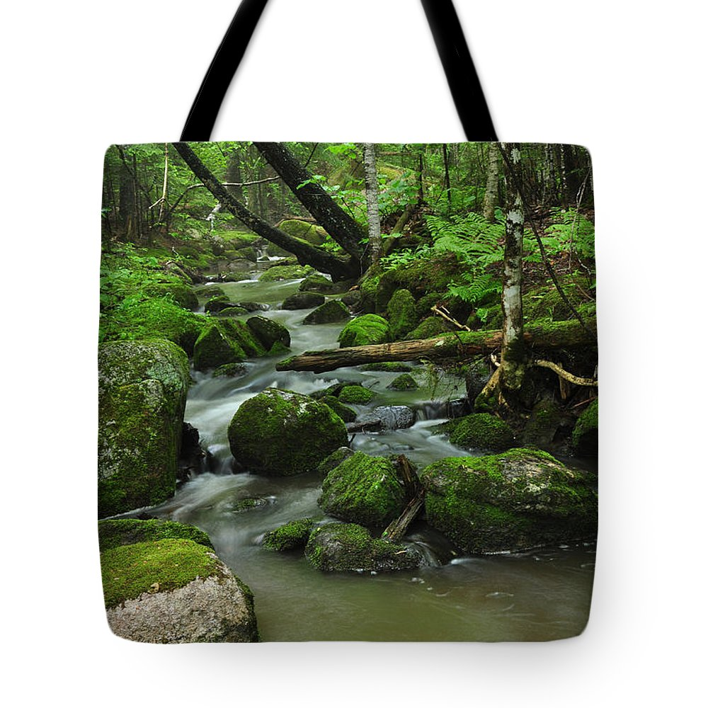 Forest Tote Bag featuring the photograph Emerald Forest by Glenn Gordon