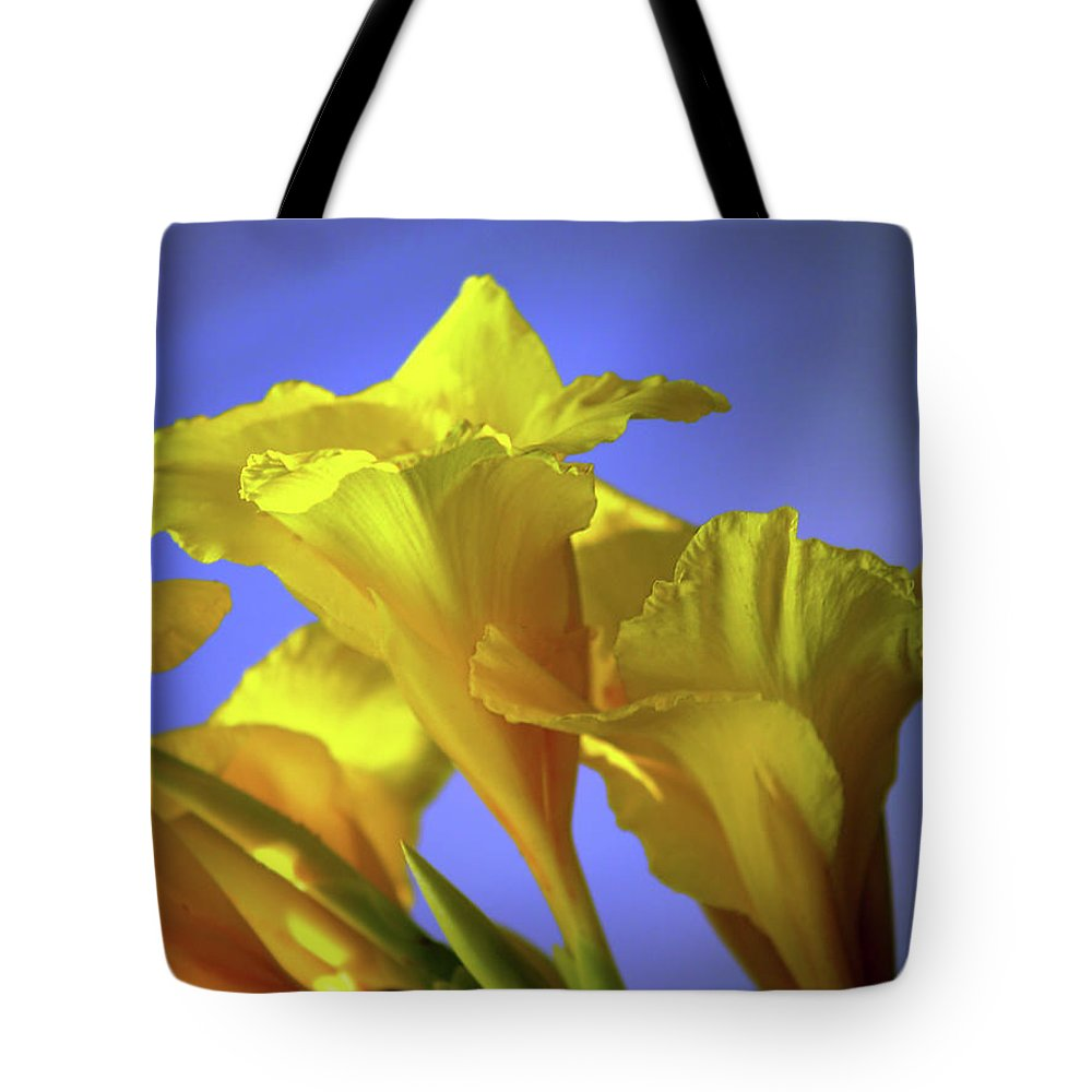 Fine Art Photography Tote Bag featuring the photograph Emerging Into The Light I by Patricia Griffin Brett