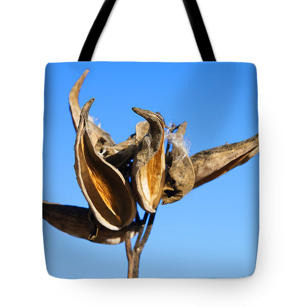 Milkweed Tote Bag featuring the photograph Empty Milkweed Pods Against Blue Sky by Donald Erickson