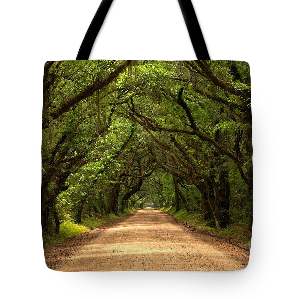 Avenue Of The Oaks Tote Bag featuring the photograph Endless Oaks by Adam Jewell