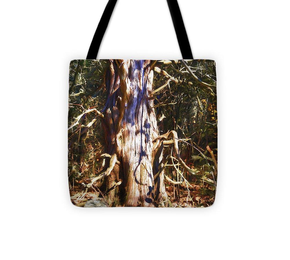 Landscape Tote Bag featuring the photograph Enfolding The Light by Jo-Anne Gazo-McKim