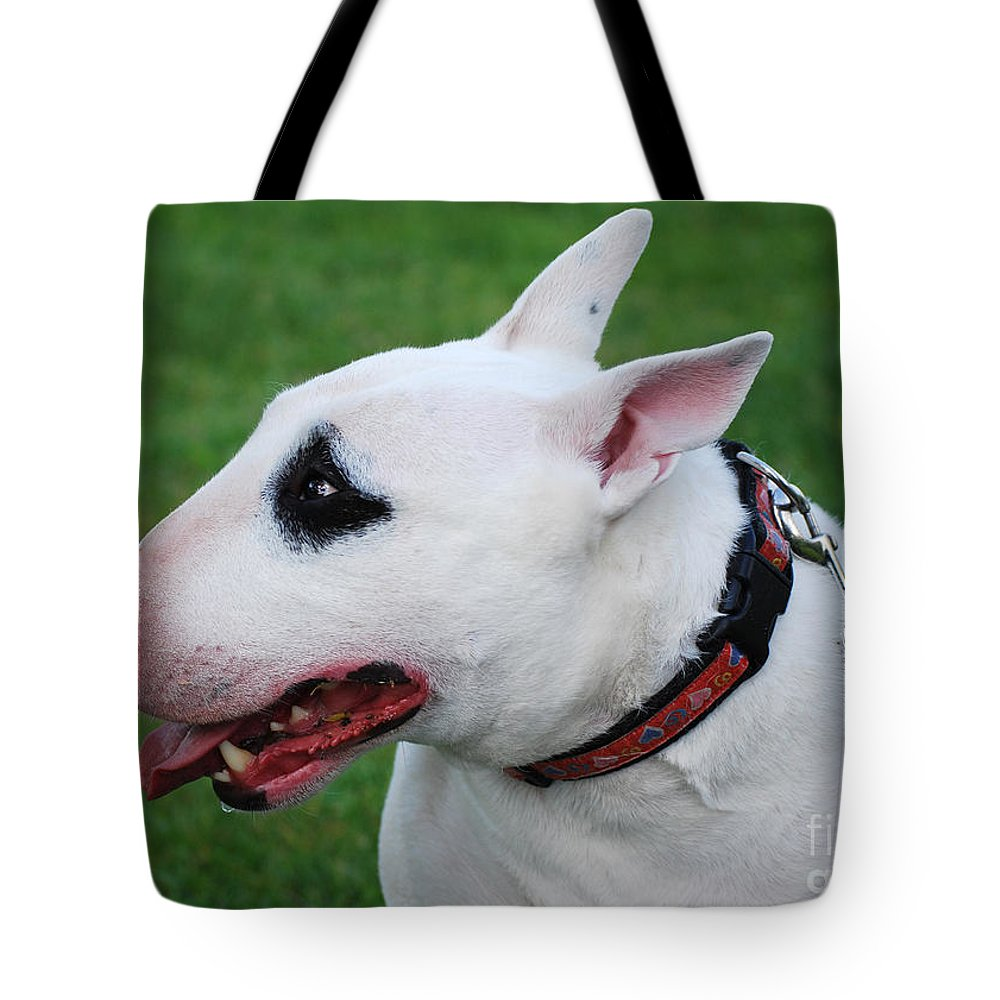 English Tote Bag featuring the photograph English Bull Terrier by Les Palenik