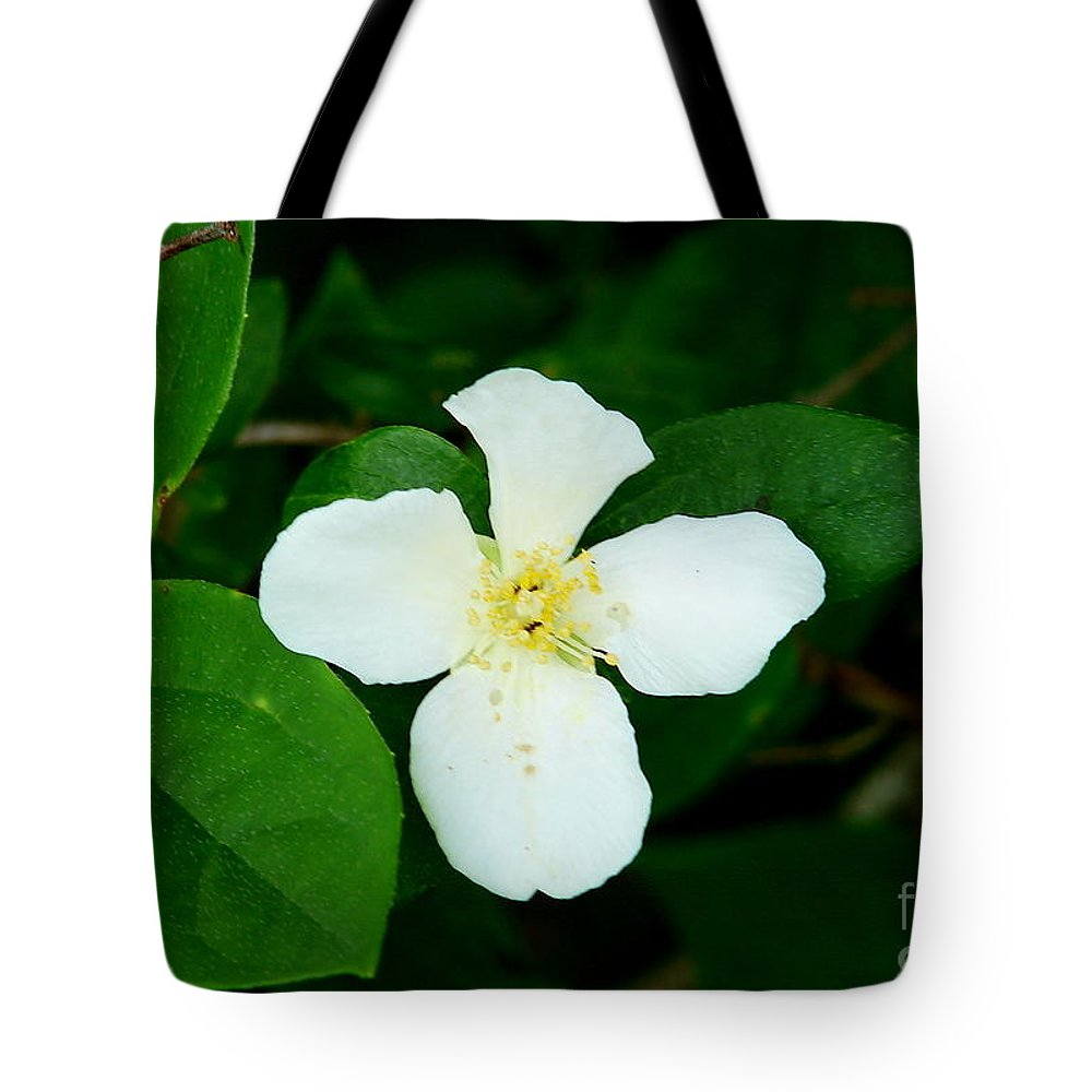Nature Tote Bag featuring the photograph English Dogwood Blossom by Lew Davis