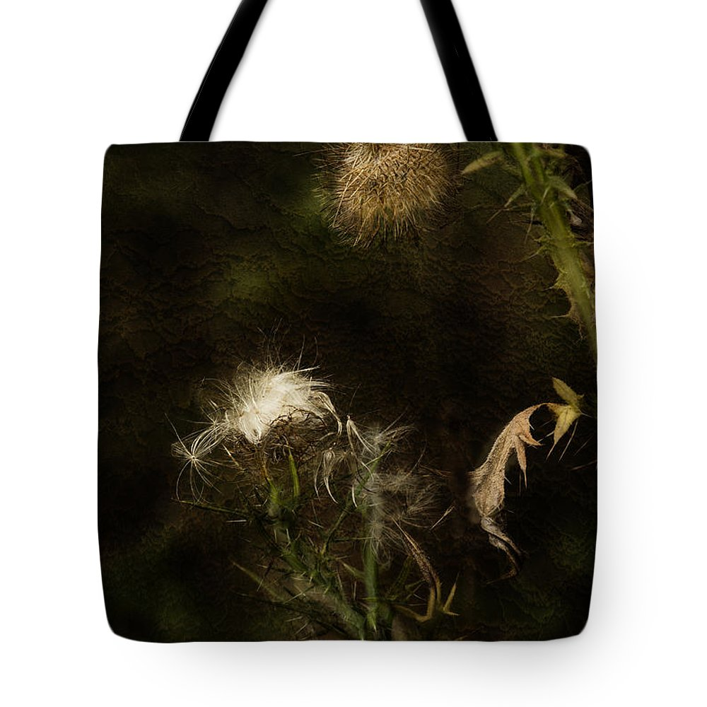 Milkweed Tote Bag featuring the photograph Enigma No 2 by Belinda Greb