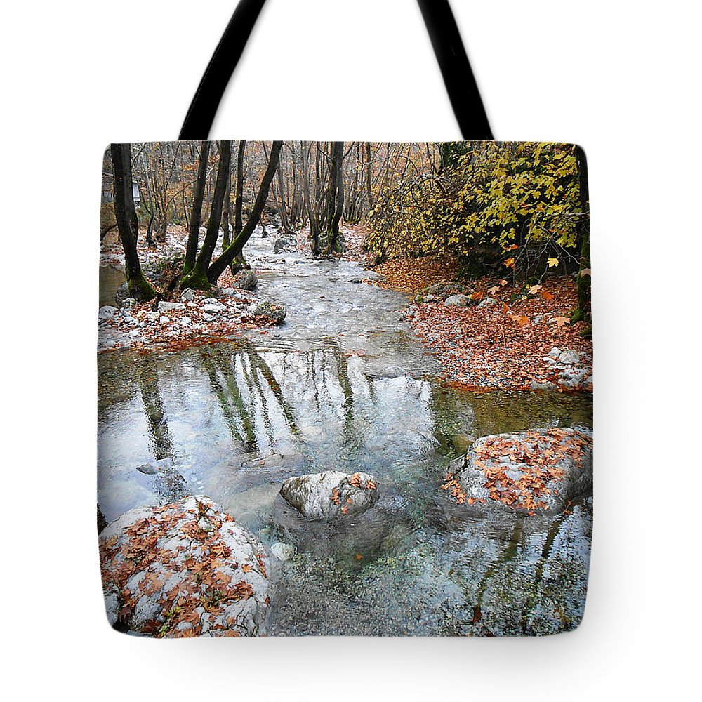 Enipeas Creek Tote Bag featuring the photograph Enipeas In Autumn by Andonis Katanos