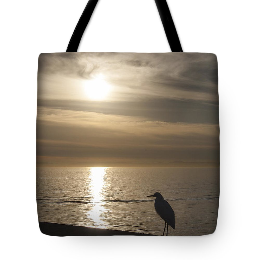 Snowy Egret Tote Bag featuring the photograph Enjoying The View by Chris Brannen