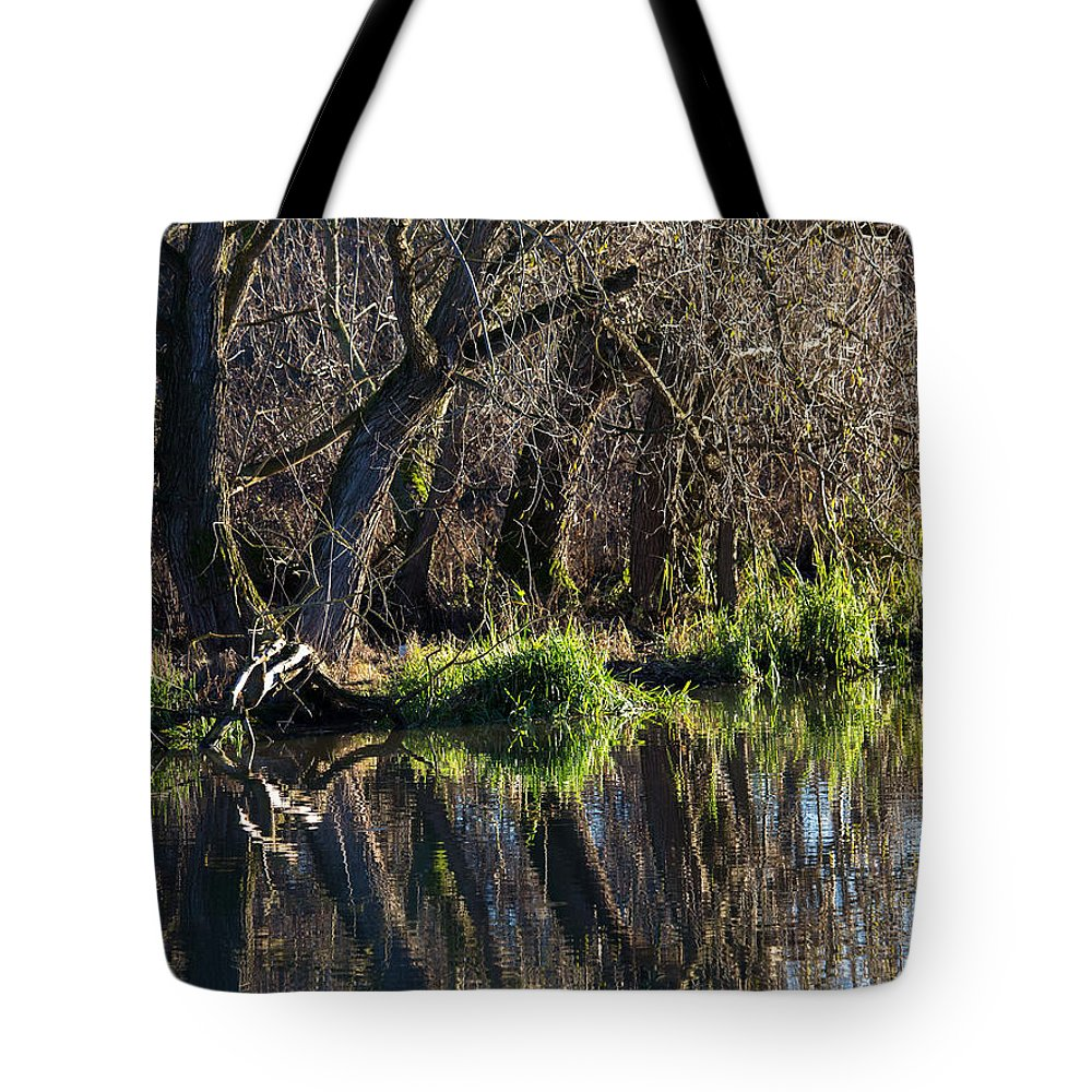 Landscape Tote Bag featuring the photograph Enkoeping Dec 2013 by Leif Sohlman