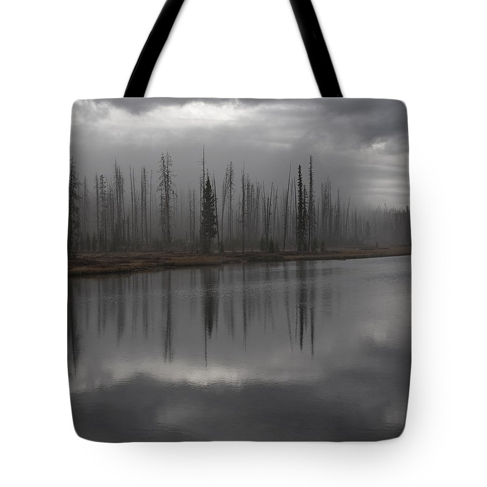 Enshrouded By Fog Tote Bag featuring the photograph Enshrouded By Fog by Wes and Dotty Weber