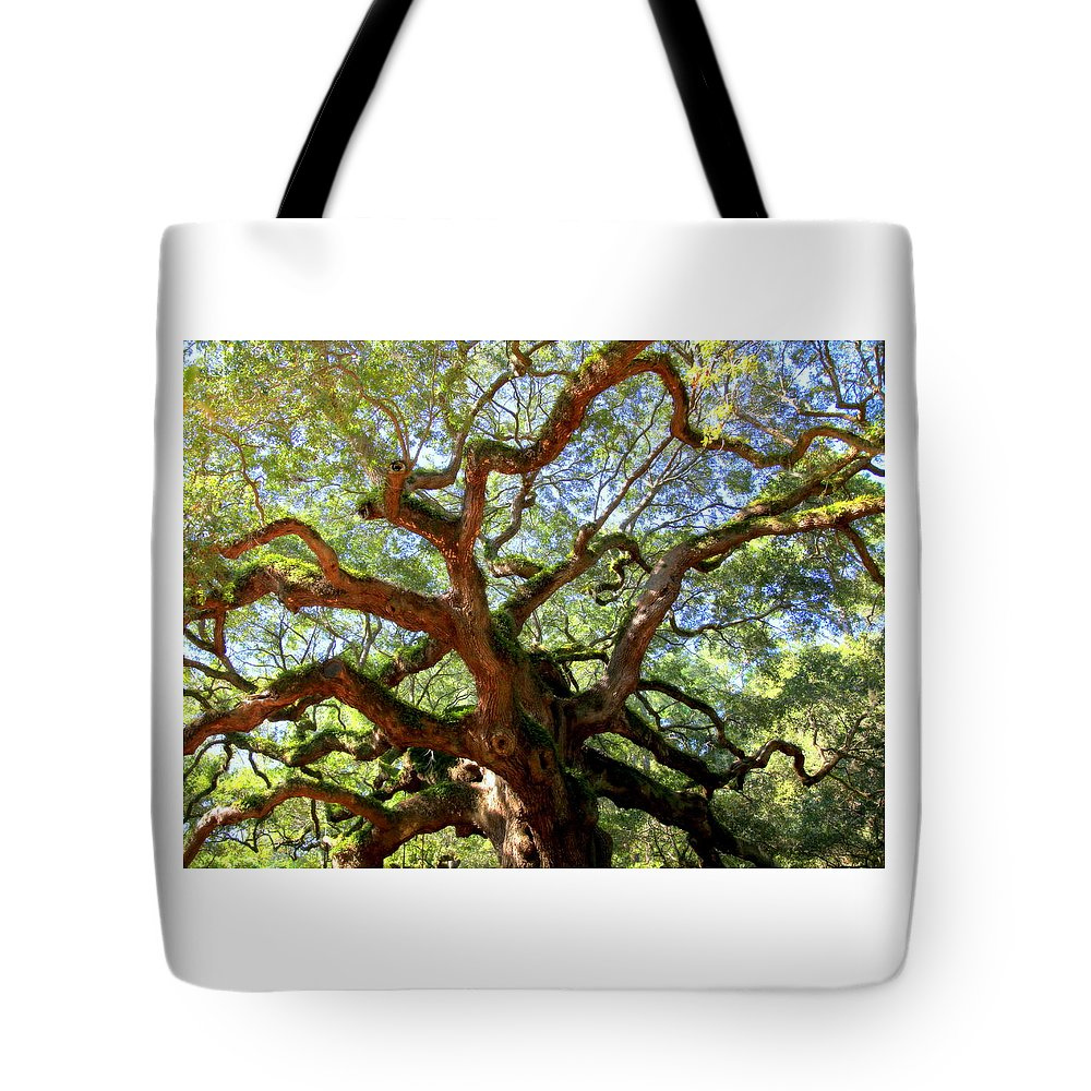 Charleston Tote Bag featuring the photograph Entangled Beauty by Karen Wiles