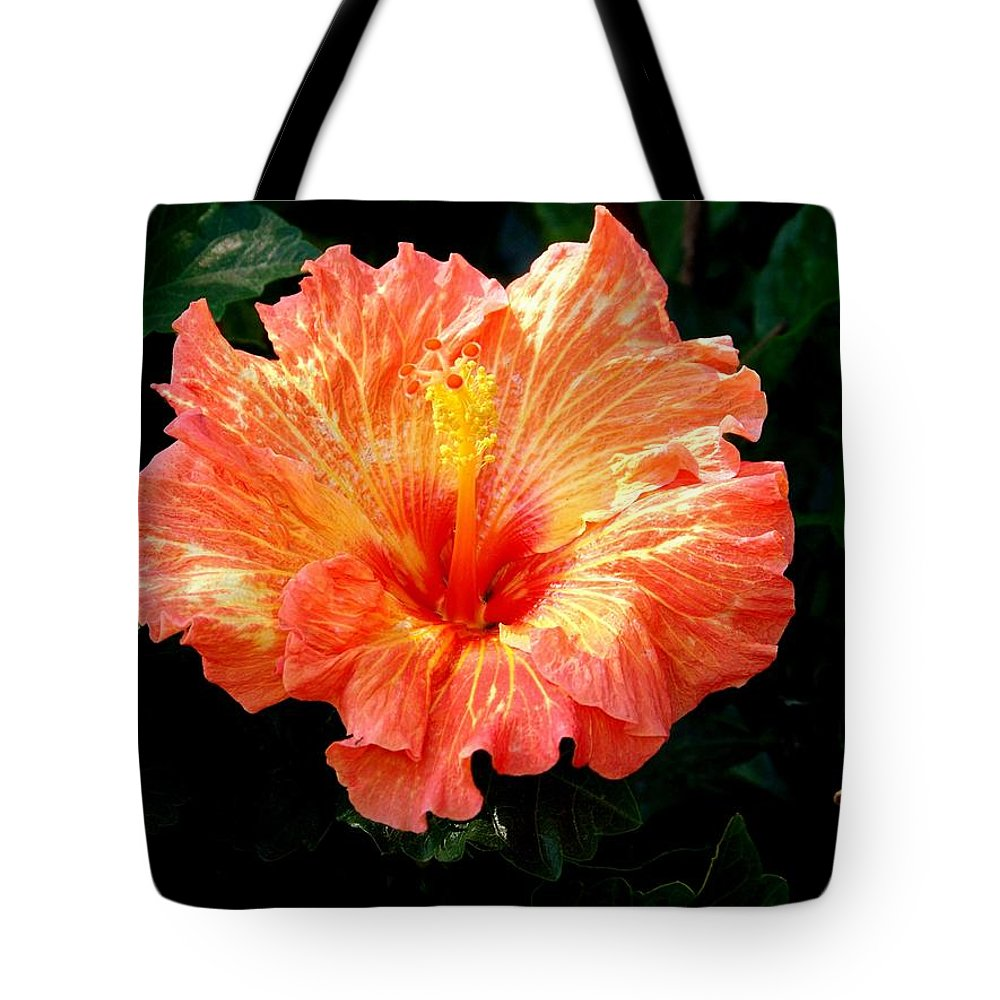 Hibiscus Tote Bag featuring the photograph Enticement by Karen Wiles