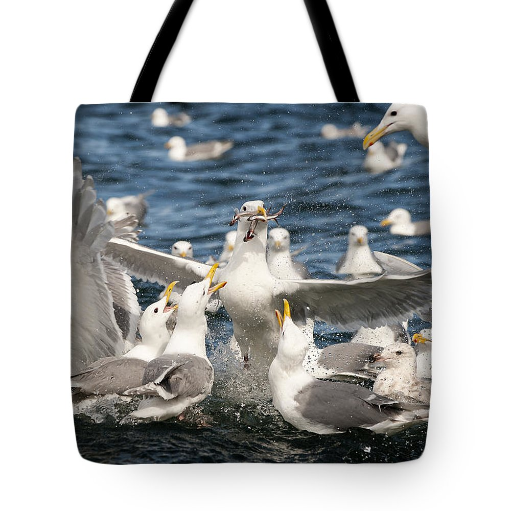 Gull Tote Bag featuring the photograph Escape Velocity by Ted Raynor