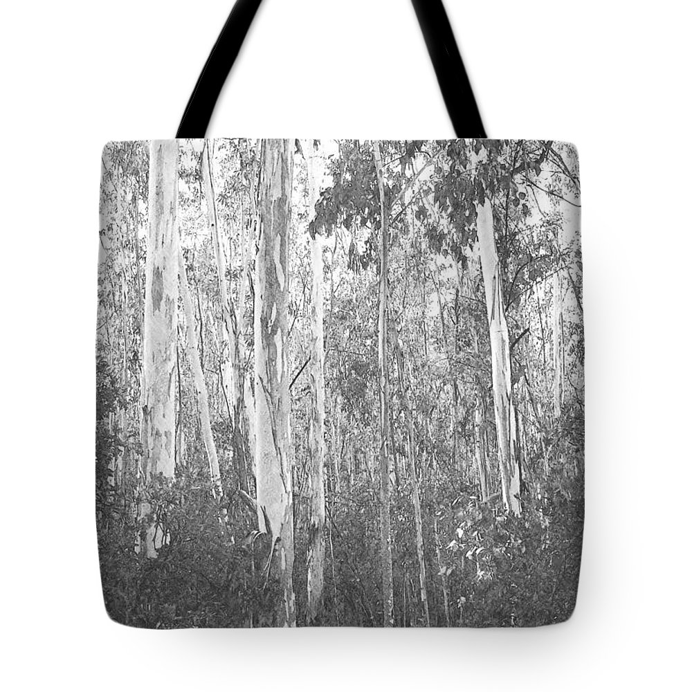 Pencil Tote Bag featuring the photograph Eucalyptus Forest by Frank Wilson