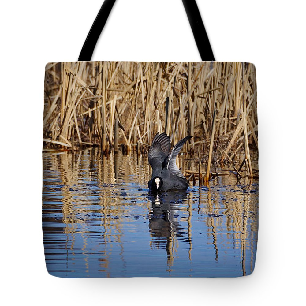 Eurasian Coot Tote Bag featuring the photograph Eurasian Coot And The Bubles by Jouko Lehto