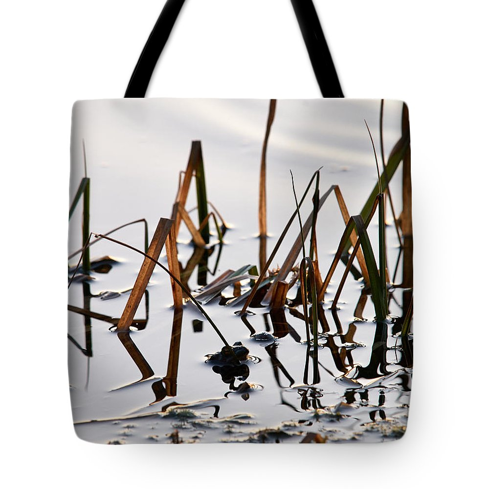 Finland Tote Bag featuring the photograph European Common Brown Frog by Jouko Lehto