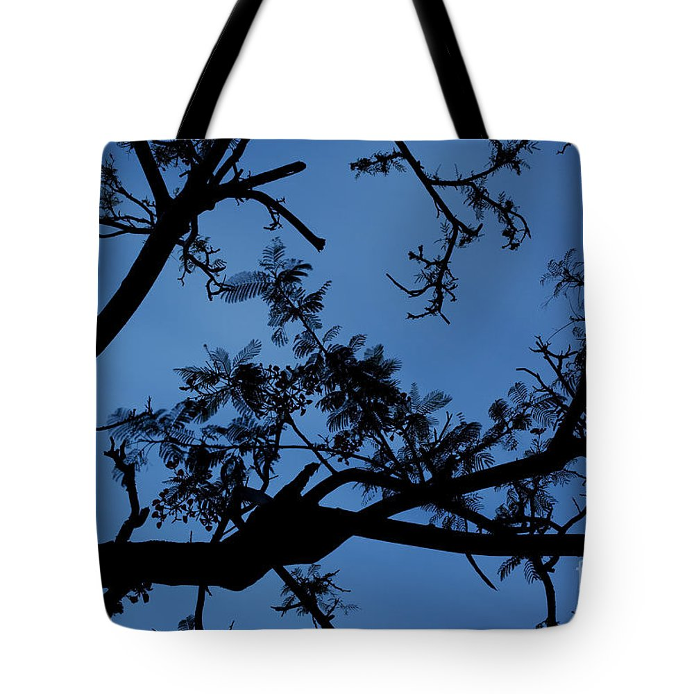 Hawaii Tote Bag featuring the photograph Evening Branches by Charmian Vistaunet